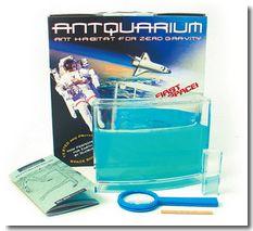 Antworks Antquarium